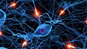 bienestar_sinapsis